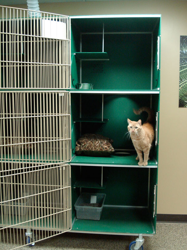 Pet Condos By Stone Mountain Pet Products