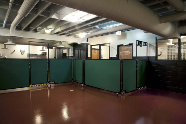 Stone Mountain Pet Products Room Dividers Doggy Day